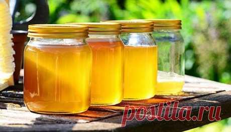 Как правильно хранить мед в квартире, чтобы он не засахарился: почему балкон не лучшее место для продуктов пчеловодства