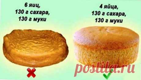 10 правил приготовления вкусного и мягкого бисквита - БУДЕТ ВКУСНО! - медиаплатформа МирТесен
