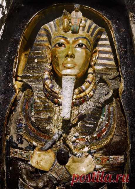 Гробница Тутанхамона в фотографиях / Научный хит