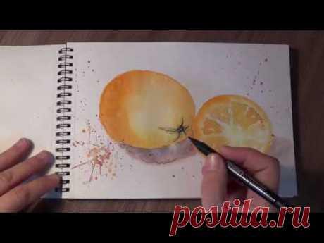 Скетчинг акварелью для начинающих. Как нарисовать апельсин