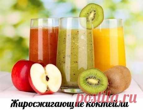 Блог - Привет.ру - Жиросжигающие коктейли - 5 рецептов. - Личный интернет дневник пользователя evgenij