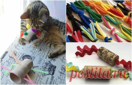 Игрушки для котов, которые можно сделать своими руками Наверняка котовладельцы часто замечали, что их питомцы охотнее играют с предметами, случайно найденными в квартире, чем с игрушками из магазина.      Причины такого поведения животных необъяснимы, н…