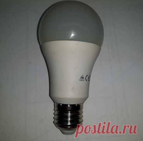 Как правильно покупать светодиодные лампы, даже можно остаться в плюсе. Проверенный совет. | ElektroTechLife | Яндекс Дзен