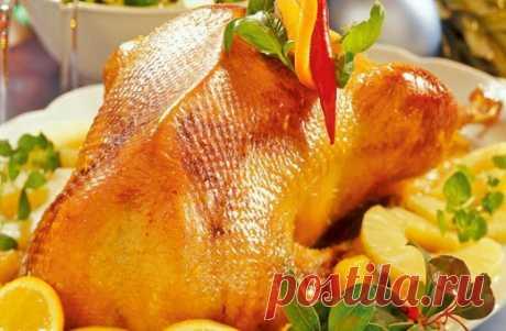 Как приготовить нежную утку в апельсиновом соусе на Новый год :: апельсиновый соус для утки :: Кулинарные рецепты