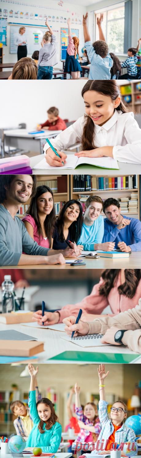 Современное образование: почему развитие важнее знаний?   Обучение