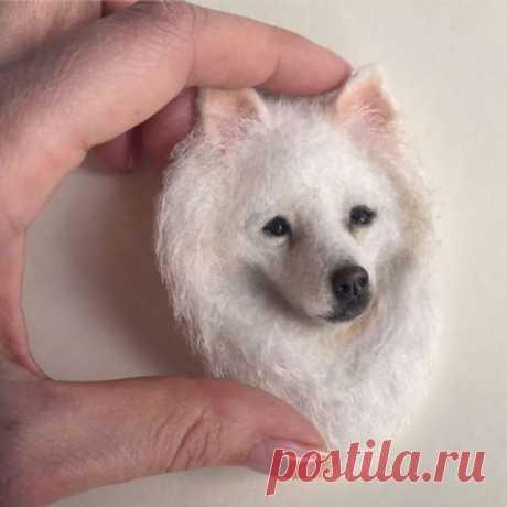 Девушка из Украины делает уникальных собак из шерсти. Они будто сейчас оживут!   Люблю Себя