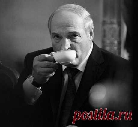 «Может быть, Батька прав?» Поспорил с белорусскими актёрами о ситуации в России и Белорусии | Записки актёра | Яндекс Дзен