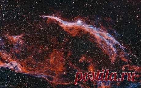 Туманность Вуаль, или Ведьмина метла. Автор фото – Герман Марков: nat-geo.ru/community/user/190974/ Красочных вам снов.
