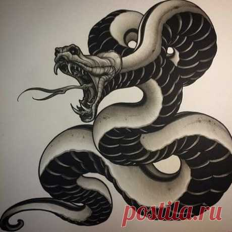 15+ Traditional Japanese Snake Tattoo Designs | PetPress