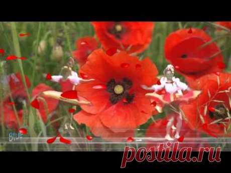 Francis Goya - Natacha - YouTube