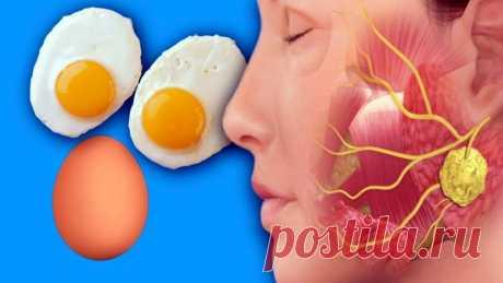 Что удивительного произойдет с вашим телом, если каждый день съедать по 3 яйца