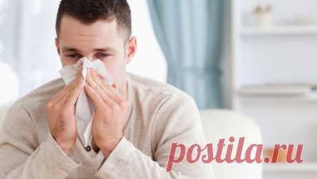 Почему люди часто чихают и что с этим делать / Будьте здоровы