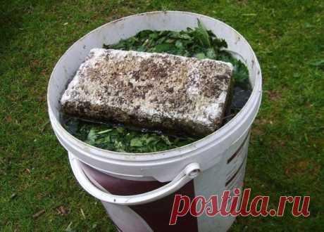 """ГОТОВИМ """"БАЙКАЛ"""" САМИ Сохраните, чтобы не потерять! Предлагаем в качестве закваски органических настоев использовать обычную сахарно-дрожжевую бражку. Готовится настой. В 200-литровую емкость (бочку) кладется: — лопата древесной или травяной золы; — полведра навоза или помета, фекалиев; — …"""