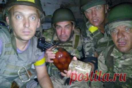 Украинские солдаты возмутили американского полковника: «ленивые, жадные» | Армия
