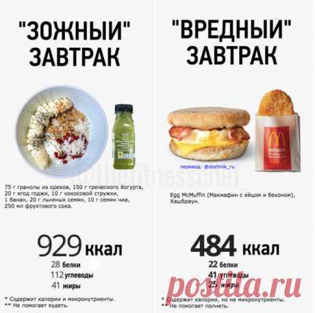 Мифы о похудении и правильном питании