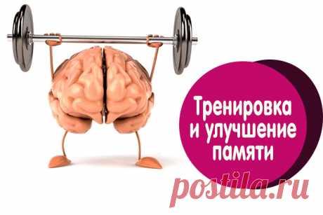 Уникальное средство для мозга и памяти | Полезные советы