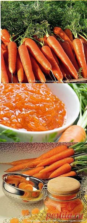 Портится морковь? Не беда. Надо варить варенье, делать напитки и даже квасить. Вырастив большой урожай моркови, хочется его сохранить. Но морковка весьма капризный овощ не только при выращивании, но и при хранении. Поэтому важно уметь готовить этот овощ не только с пользой для организма, но и так, чтобы было вкусно.