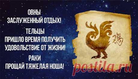 Самый точный гороскоп на год Красного Петуха   Зеркало Венеры