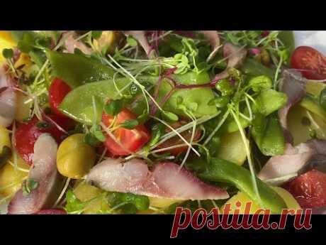 Салат из сельди, овощей и микрозелени – кулинарный рецепт