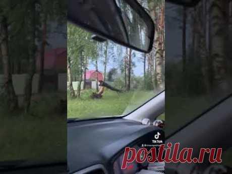 Уроган в Московской области Ногинск-9