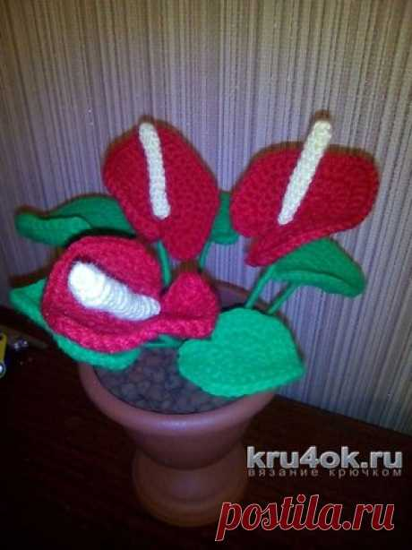 """Knitted hook flowers. Irina's work\u000d\u000a\u000d\u000aGood afternoon. I present the next fake to kindergarten on the subject \""""My Houseplants\"""". Due to the small date of performance of hand-made articles it was decided to connect my favourite anturium as it is simple to knit it, and on beauty it does not concede to other plants. Knitted from the remains, all 100% acryle in 2 additions, a hook #3. For the basis of a stalk used a copper wire in several additions. The pot for a flower on 3\/4 is filled with polyurethane foam, and..."""