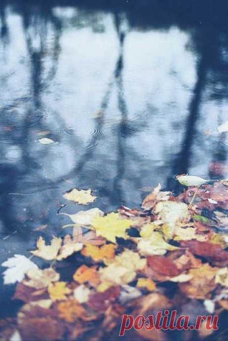 #НастроениеОсень