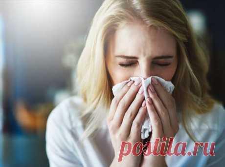 Аллергия: откуда она берется, какой бывает и можно ли избавиться от нее навсегда | Люблю Себя