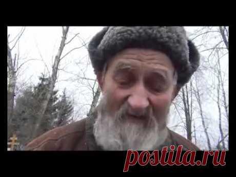 пророчества блаженной Пелагеи Рязанской