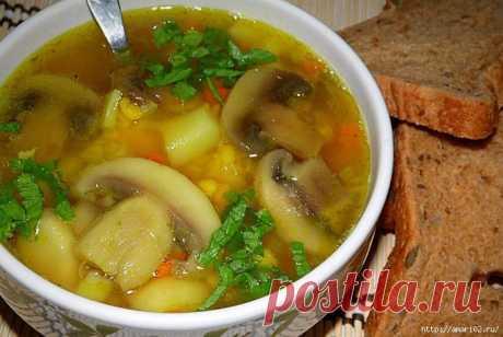 Вкусные домашние рецепты супов