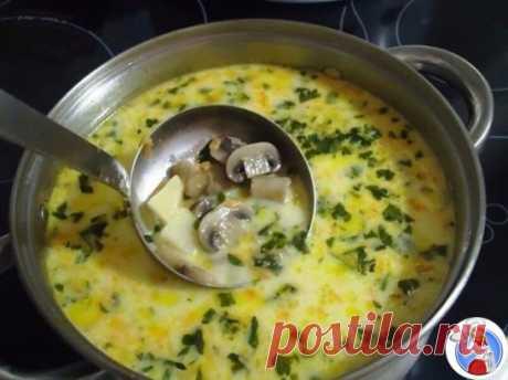 Самый вкусный грибной сливочный суп  Ингредиенты: шампиньоны — 200 грамм; картошка — 2 штуки; сливки (можно молоко) — 100 грамм; морковка — 1 штука; сырок плавленый — 70-100 грамм; лук репчатый — 1 штука; укроп — 1 пучок; соль — по вкусу;перец — по вкусу; растительное масло для жарки. Самый вкусный грибной сливочный суп.  Пошаговый рецептЧтобы готовить грибной сливочный суп, сначала необходимо вскипятить в кастрюльке два литра воды. Пока водичка нагревается, подготовим картошку. Ее нужно помы