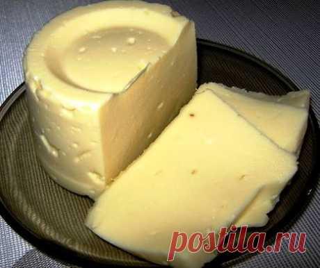 Домашний твердый сыр - пошаговый рецепт с фото Приготовить домашний твердый сыр не так уж и сложно. Такой сыр можно смело давать малышу, ведь в нем не будет никаких ароматических добавок и красителей. Он получается не очень соленным, если вы любите посолонее - добавляйте чайную ложку соли и больше. реглан спицами для детей
