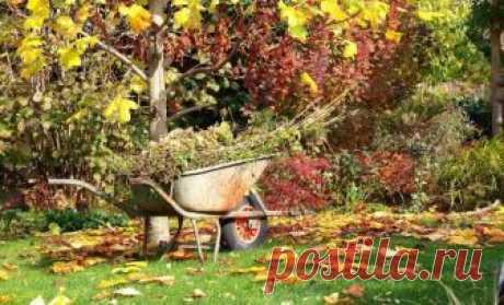 Подготовка сада к зиме: какие работы выполнить осенью Осенью, когда весь урожай уже собран, работы в плодовом саду не заканчиваются. Пока участок не покроется снегом, нужно много чего успеть сделать. Как же подготовить сад к зиме? Осенью деревья и кустар...