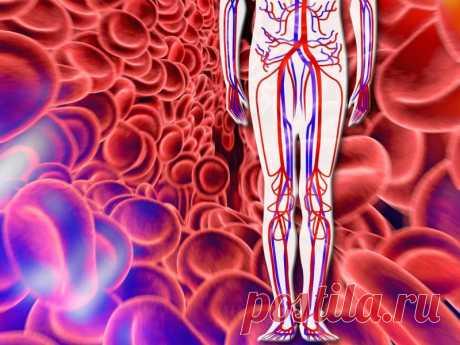 3 действенных совета как улучшить кровообращение ног - Благодарно и Благополучно 🌹
