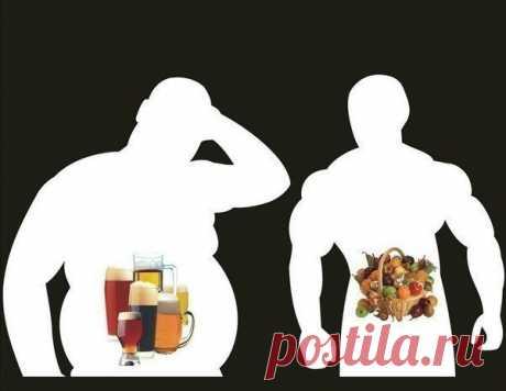 Время переваривания пищи в желудке — Мегаздоров