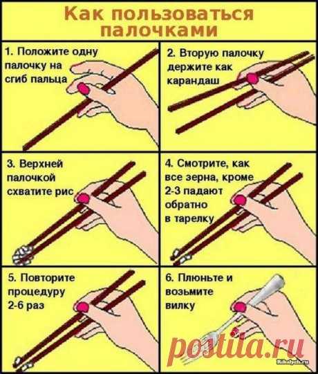 Как научиться есть палочками — Полезные советы