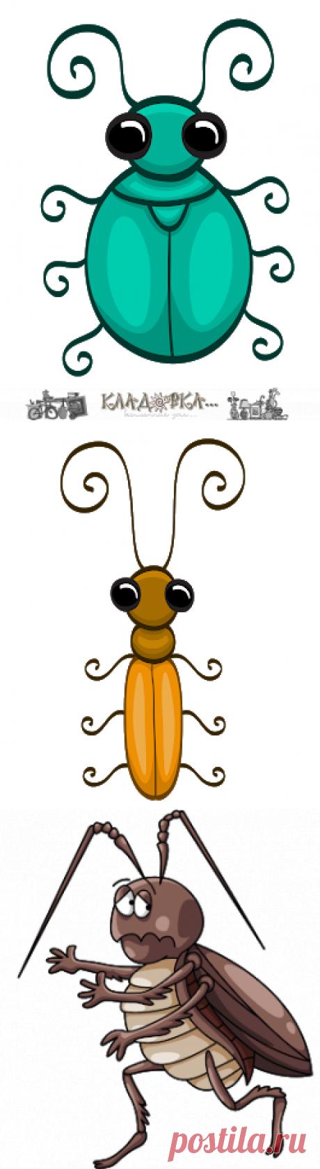 Кладовка...: жуки и тараканы - на прозрачном фоне