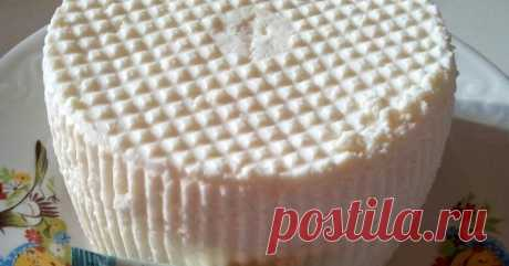Сыр Рикотта на сыворотке с молоком рецепт с фото пошагово