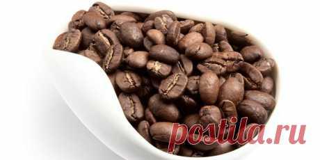 Кофе в зернах - рейтинг лучших и элитных сортов, как выбрать лучший для кофемашины и цены Специалисты говорят, что кофе в зернах – это самый лучший и полезный вид этого бодрящего напитка. Узнайте, какие сорта существуют на рынке, каковы известные производители продукта