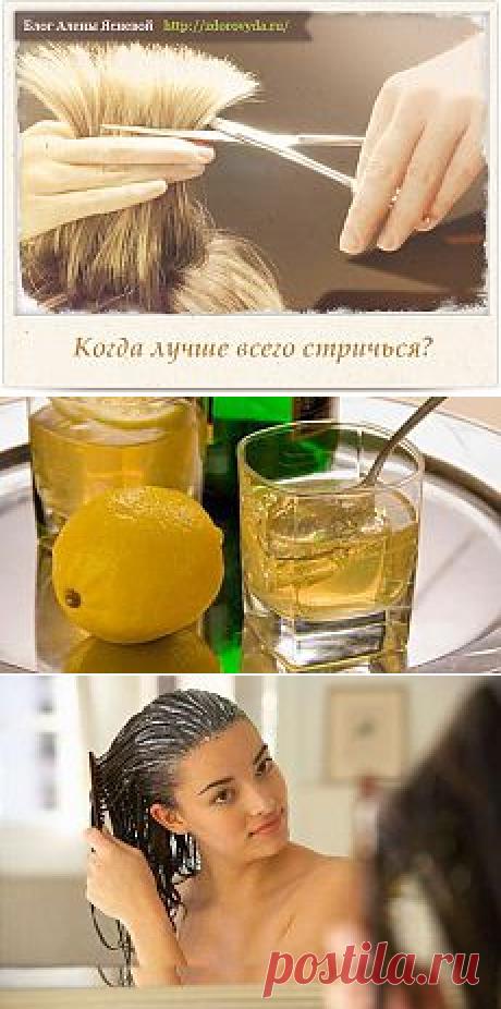ЗДОРОВЬЕ. все для красивых волос | Фотографии и советы на Постиле