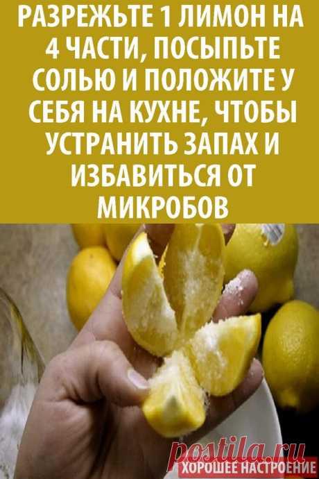 Разрежьте 1 лимон на 4 части, посыпьте солью и положите у себя на кухне, чтобы устранить запах и избавиться от микробов