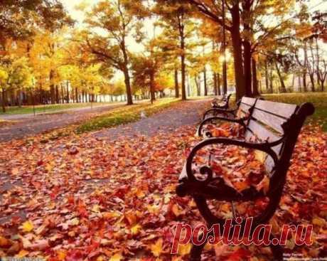 Осінь у Запоріжжі