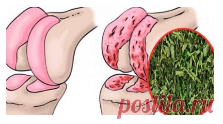 Эффективное средство для восстановления хрящей коленей, суставов и укрепления костей! - topovoye.ru