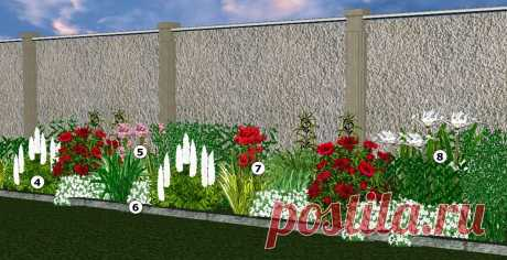 Хотите создать узкий цветник, который будет цвести с весны до поздней осени? | Усадьба в долине | Яндекс Дзен