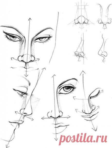 Рисуем нос
