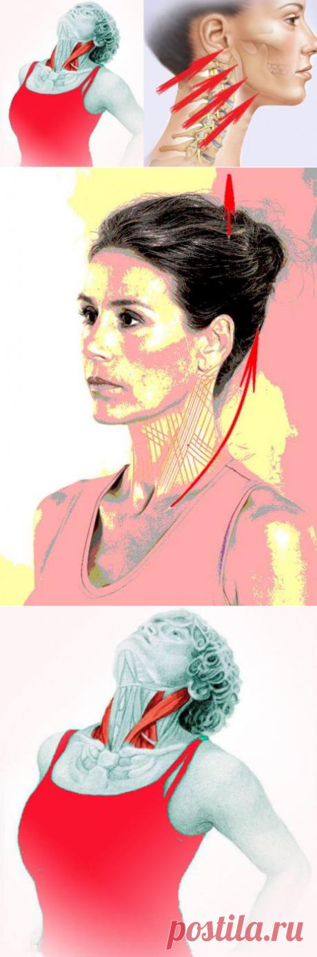 Упражнение «Бабочка»: укрепляем шею и подтягиваем подбородок   Чаровница и проказница