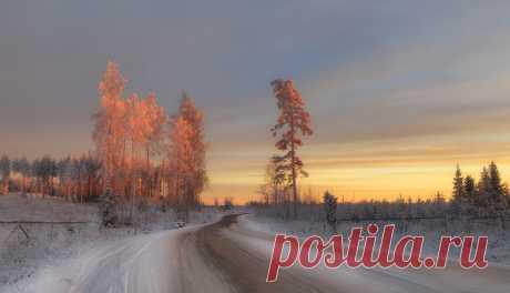 Фото В нарядах цвета персика - фотограф Ирина З. - пейзаж, природа - ФотоФорум.ру