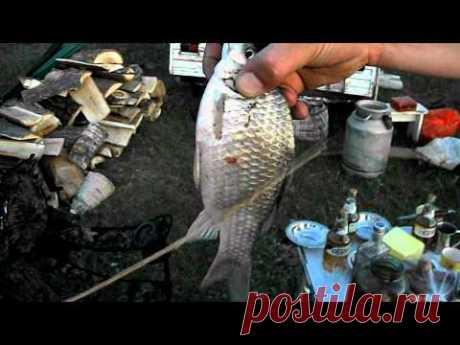 Рыболовные ритуалы - YouTube