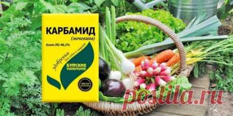 Карбамид (мочевина) — Ботаничка.ru