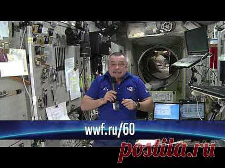 Российский космонавт Михаил Тюрин записал на МКС видеообращение, в котором призвал всех людей присоединиться к международной акции «Час Земли», тем самым выразив солидарность и понимание проблем, которые угрожают нашей планете.