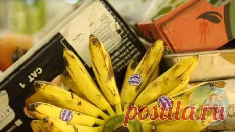 Почему стоит включить банан в ежедневный рацион питания. Мнение диетолога